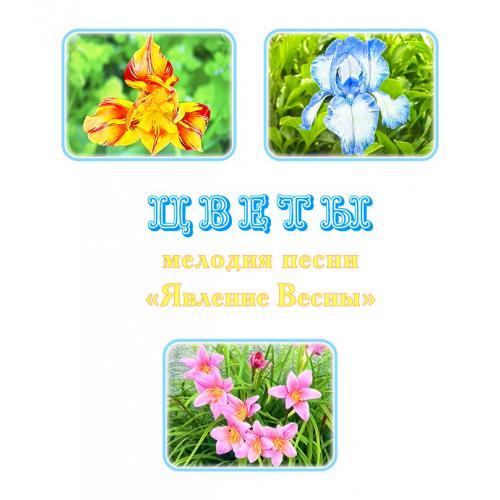 Мелодия песни «ЯВЛЕНИЕ ВЕСНЫ. ЦВЕТЫ», вариант 1. CD
