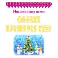 Инсценировка песни *ПЛАВНО КРУЖИТСЯ СНЕГ*. DVD