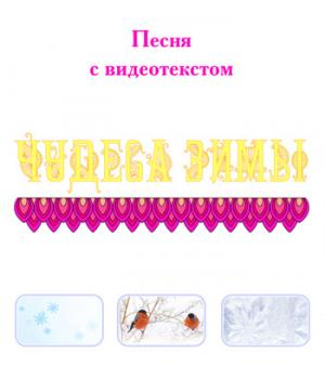 Песня *ЧУДЕСА ЗИМЫ* (выпуск 2), с видеотекстом. DVD