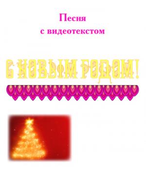 Песня *С НОВЫМ ГОДОМ!*, с видеотекстом. DVD